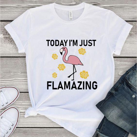 To day I'm just Flamazing Tshirt FD17J0